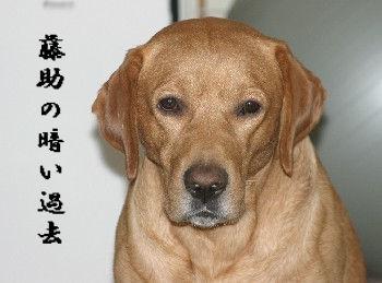 Haku00