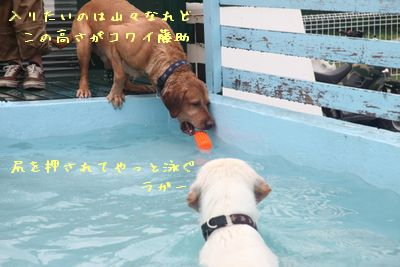 Pool00