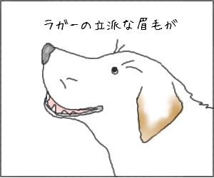 Mayuge00_2