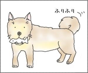 Shiba03