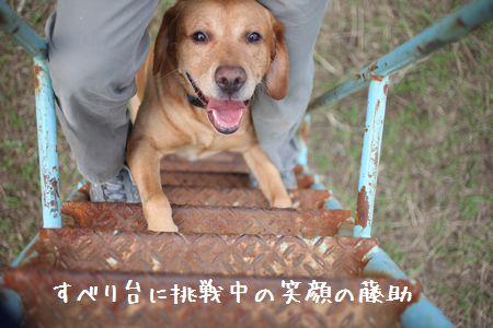 Yamanakako