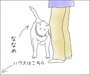 Naname02