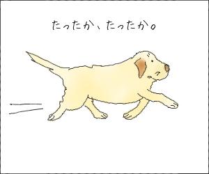 Isogu01