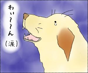 Akadake07