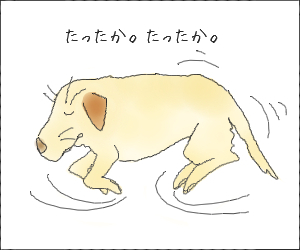 Yume12_1_2