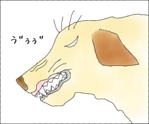 Yume13
