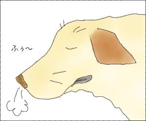 Yume14