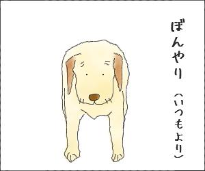 Kyosei02
