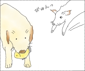 Katazuke04