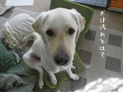 Oosouji10