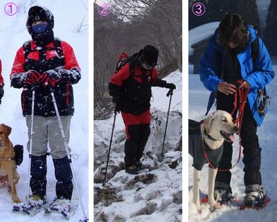 Snowsh02